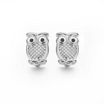 Wise Owl Studs
