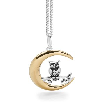 Owl in Moon Pendant